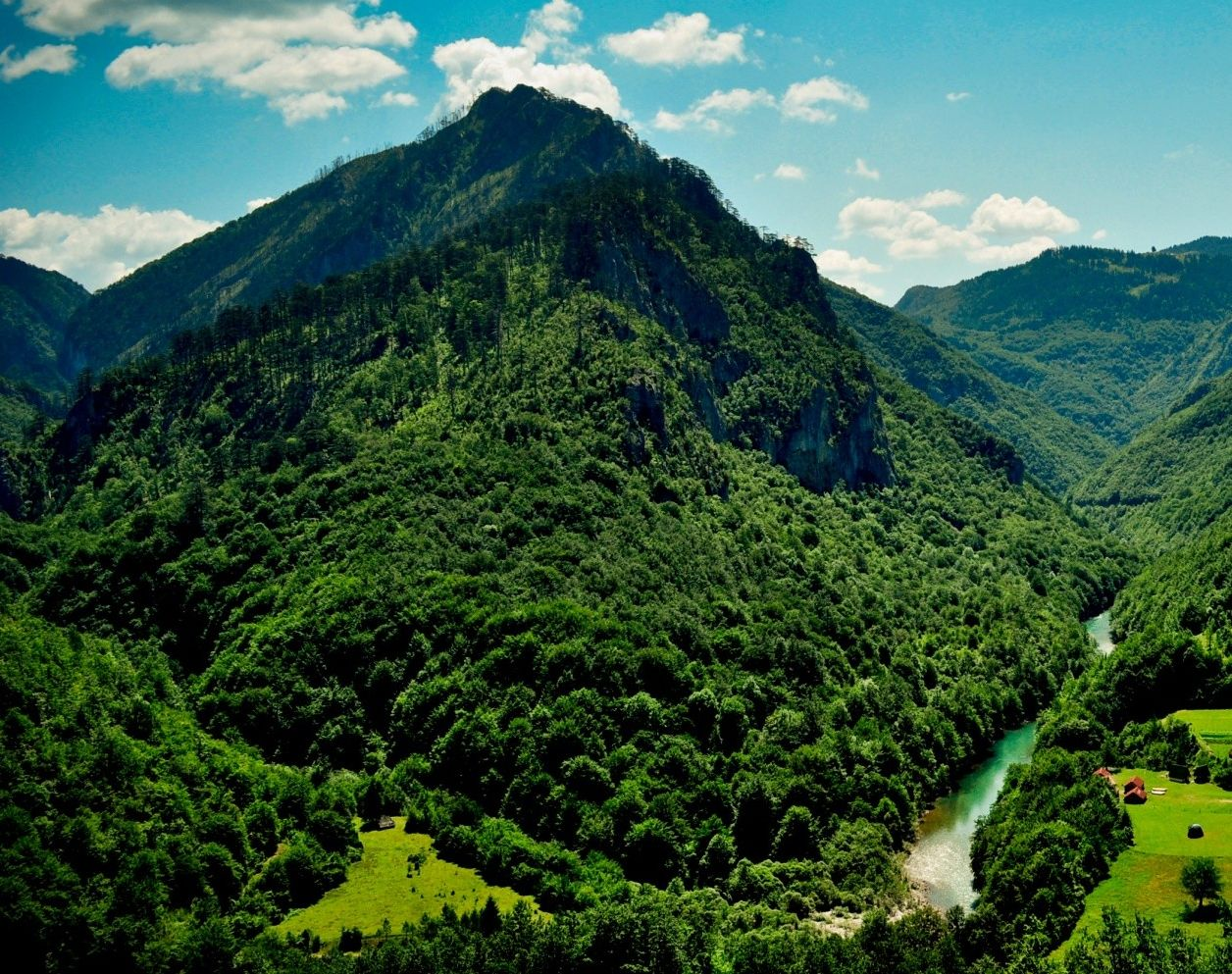 Grandes montanas verdes-67919